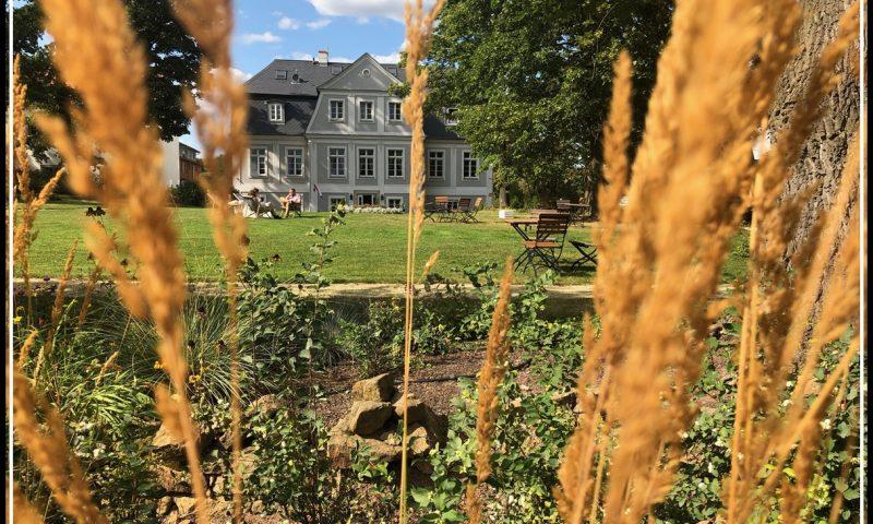 Pałac Kamieniec Wrocław Kobiecym Okiem